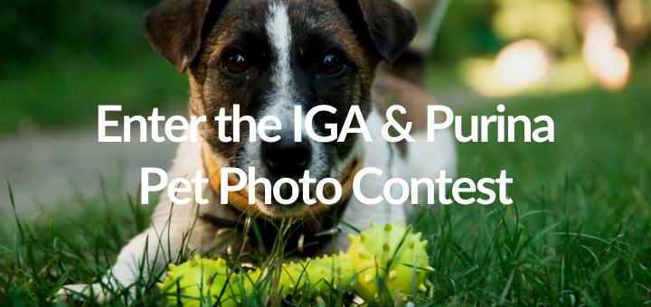 IGA and Purina Pet Photo Contest