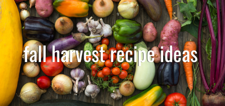 Fall Harvest Recipe Ideas