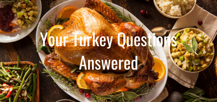 Turkey Questions Answered